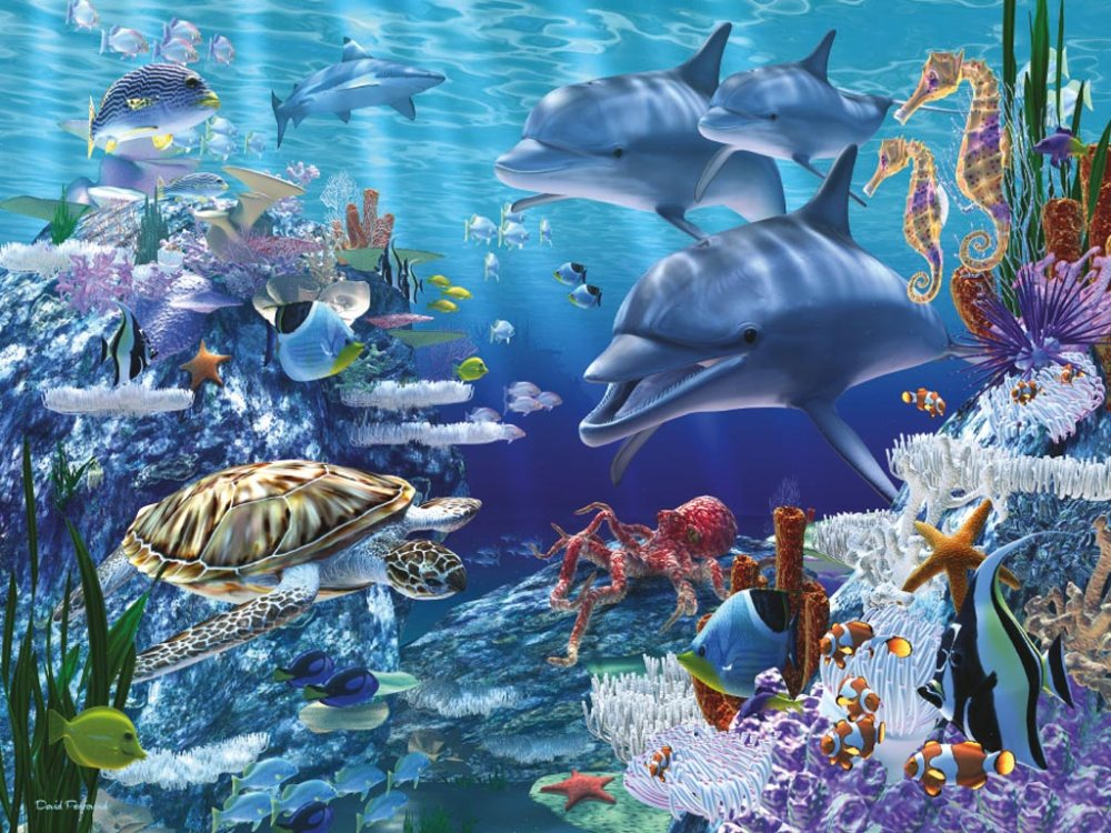 Protect Our Sea Life Protect Our Planet